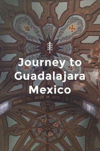Journey to Guadalajara Mexico