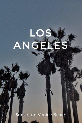 LOS ANGELES Sunset on Venice Beach