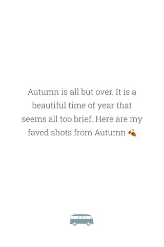 Autumn is all but over. It is a beautiful time of year that seems all too brief. Here are my faved shots from Autumn 🍂
