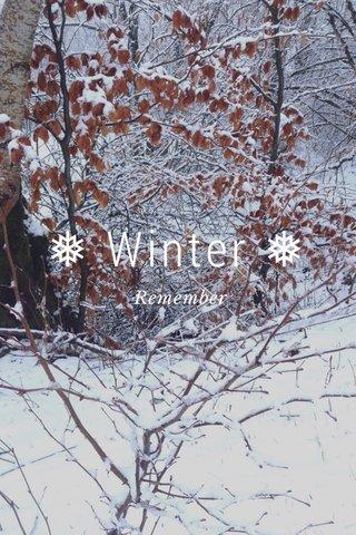 ❅ Winter ❅ Remember
