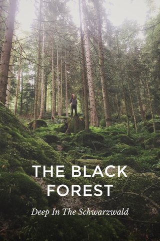 THE BLACK FOREST Deep In The Schwarzwald