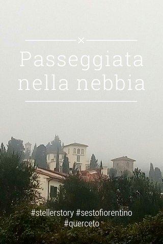 Passeggiata nella nebbia #stellerstory #sestofiorentino #querceto