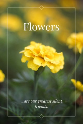 Flowers ...are our greatest silent friends.