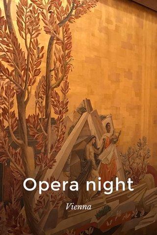 Opera night Vienna