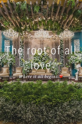 The root of all love Where it all begins ❤️