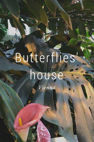 Butterflies' house Vienna