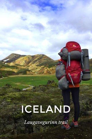 ICELAND Laugavegurinn trail
