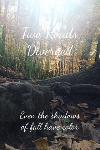 Two Roads Diverged Even the shadows of fall have color