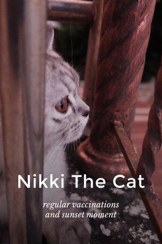 Nikki The Cat regular vaccinations and sunset moment