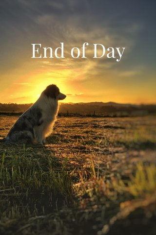 End of Day