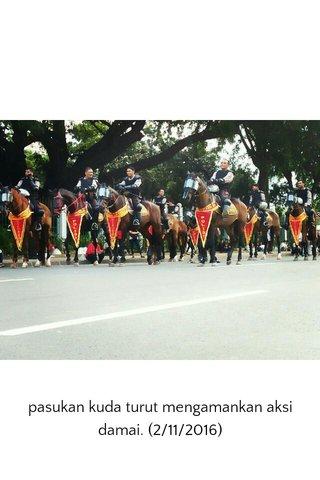 pasukan kuda turut mengamankan aksi damai. (2/11/2016)