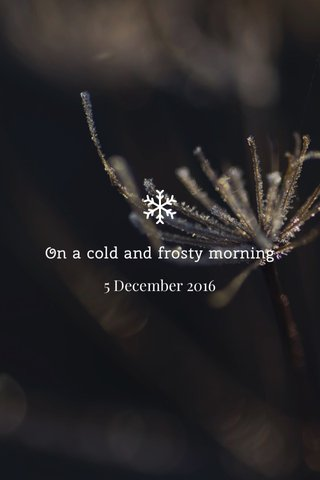On a cold and frosty morning 5 December 2016