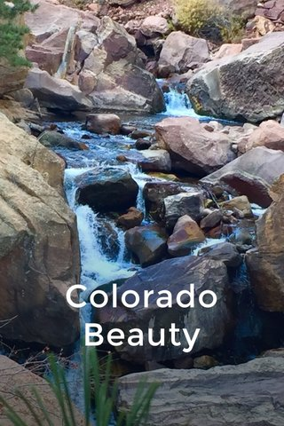 Colorado Beauty