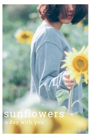 sunflowers a day with you