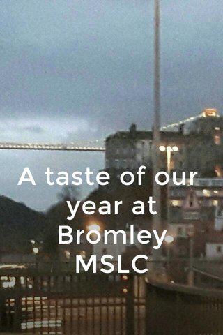 A taste of our year at Bromley MSLC