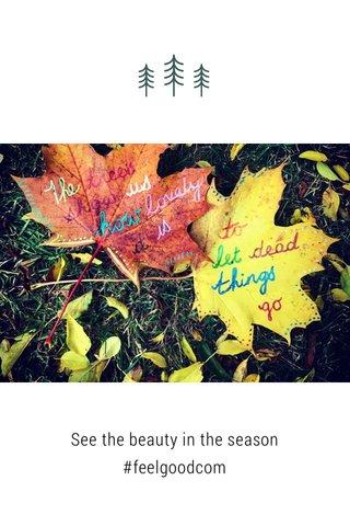 See the beauty in the season #feelgoodcom