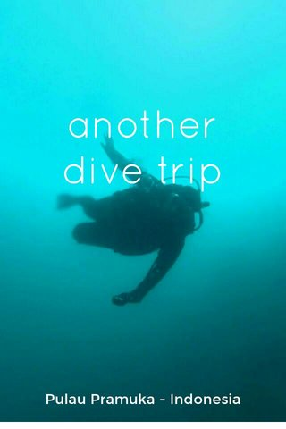 another dive trip Pulau Pramuka - Indonesia