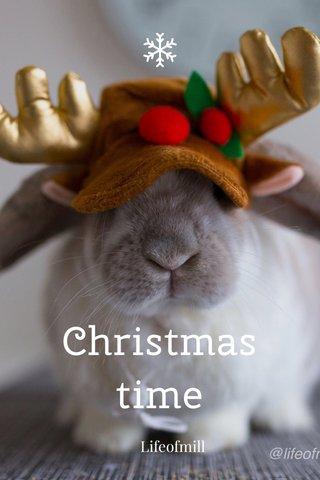 Christmas time Lifeofmill