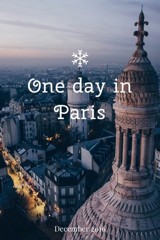 One day in Paris December 2016