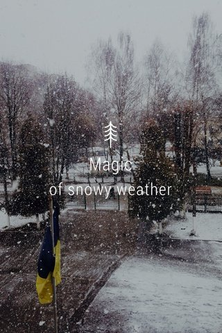 Magic of snowy weather