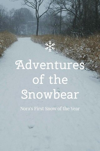 Adventures of the Snowbear Nora's First Snow of the Year