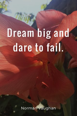Dream big and dare to fail. Norman Vaughan