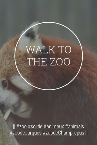 WALK TO THE ZOO    #zoo #sortie #animaux #animals #zoodeJurques #zoodeChamprepus   