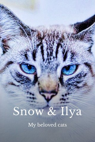 Snow & Ilya My beloved cats