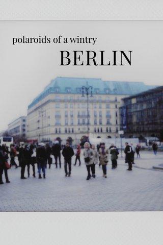 BERLIN polaroids of a wintry