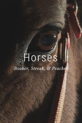 Horses Booker, Streak, & Peaches