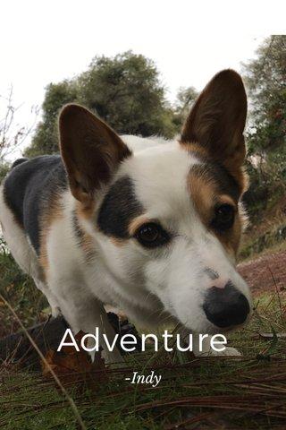 Adventure -Indy