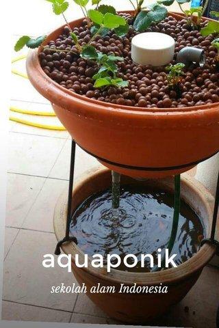 aquaponik sekolah alam Indonesia