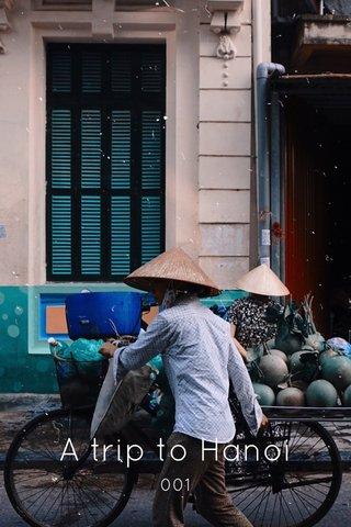 A trip to Hanoi 001