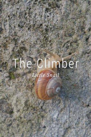 The Climber Little Snail