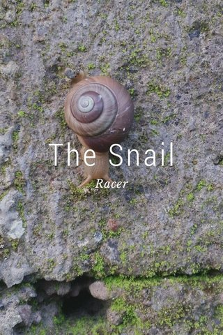 The Snail Racer