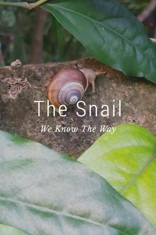 The Snail We Know The Way