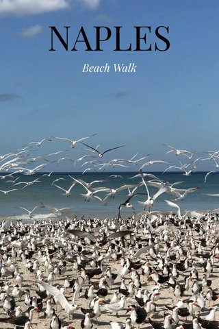 NAPLES Beach Walk