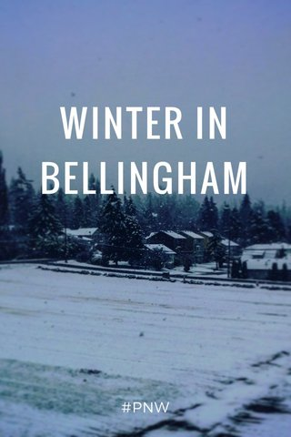 WINTER IN BELLINGHAM #PNW