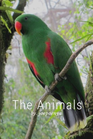 The Animals by. joepoenya