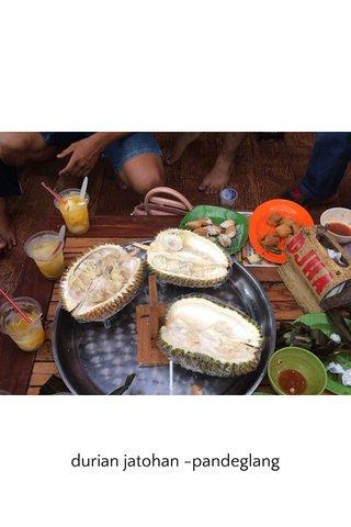 durian jatohan -pandeglang