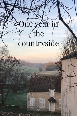 One year in the countryside