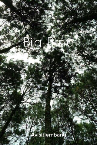 Big Pine #visitlembang