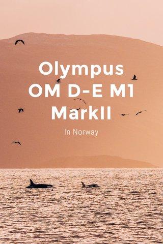 Olympus OM D-E M1 MarkII In Norway