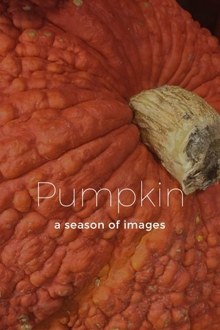 Pumpkin a season of images
