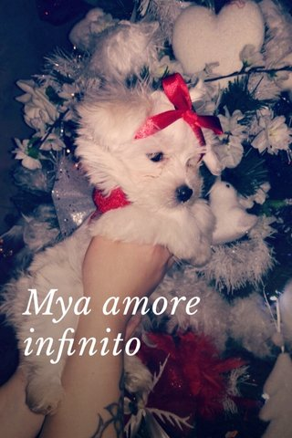 Mya amore infinito