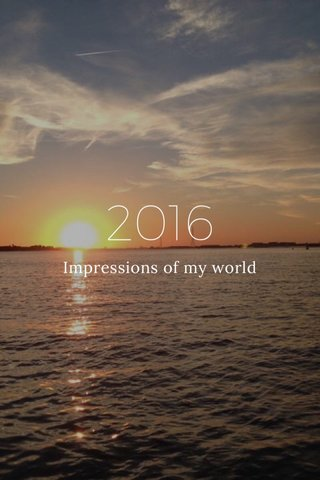 2016 Impressions of my world
