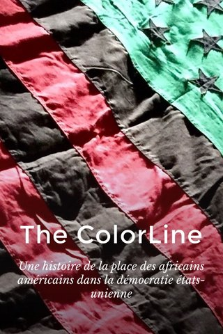The ColorLine Une histoire de la place des africains américains dans la démocratie états-unienne