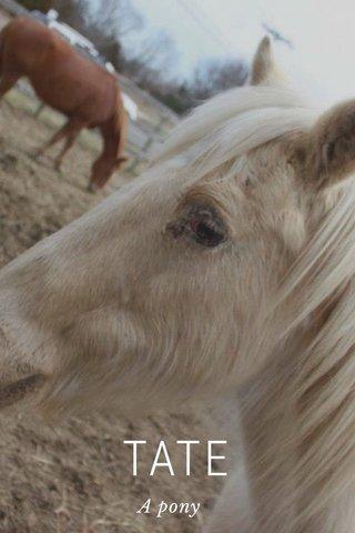 TATE A pony