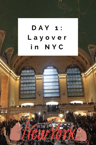 DAY 1: Layover in NYC