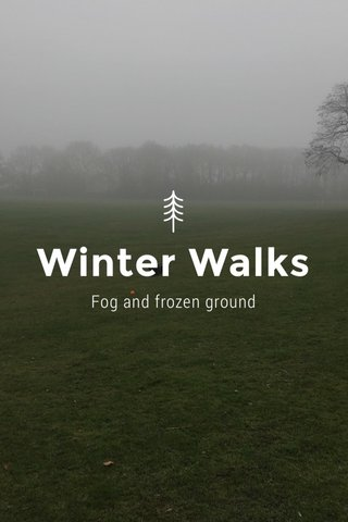 Winter Walks Fog and frozen ground